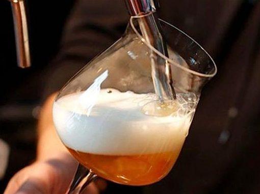 Birra artigianale & Marche: un territorio in fermento!