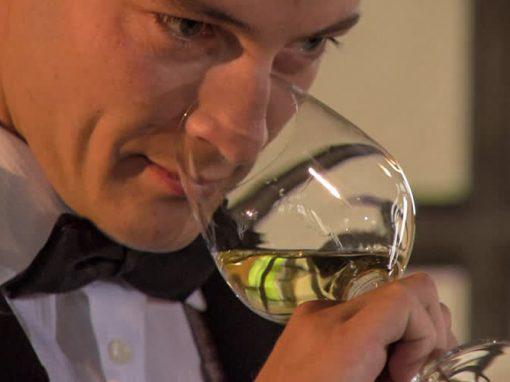 Turbiana e Verdicchio: due vitigni, due territori, due vini, diversi ma profondamente simili