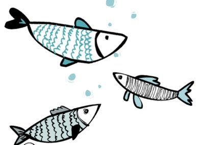 Nell'ambito della denominazione comunale d'origine (De.C.O.) sangiorgese: vetrina del pescato tipico locale