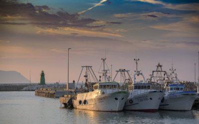 GustaPorto: decolla il nuovo turismo tra reale e digitale